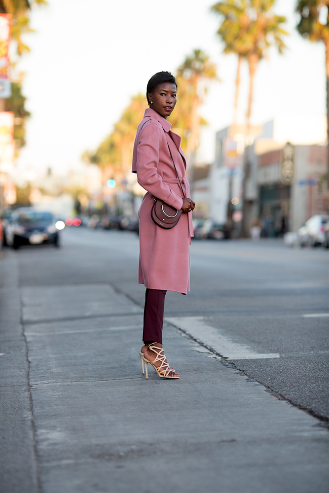 deddeh_howard_secretofdd_theory_pink_coat